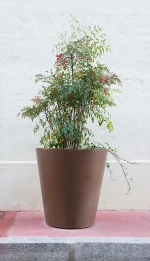 realisation-pot-plantes-montpellier-4